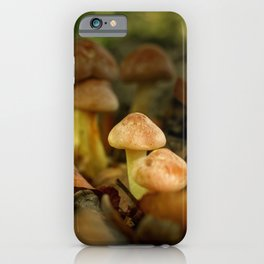 In the limelight iPhone Case