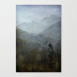 Beautiful mist Canvas Print
