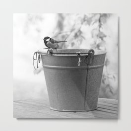 Songbird (Great Tit) on Autumn Day Black and White #decor #society6 #buyart Metal Print