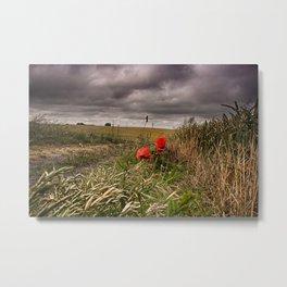 Poppies At Northbourne Metal Print