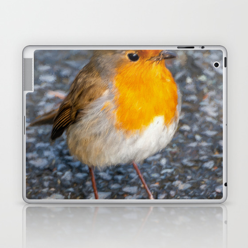 Robin Redbreast Laptop & iPad Skin by adrianevans (LSK10082638) photo