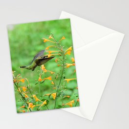 Hovering hummingbird and orange agastache 57 Stationery Cards