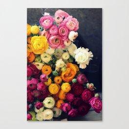 Loads of Ranunculus Canvas Print