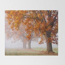 Oaks in the misty Autumn morning (Golden Polish Autumn) Throw Blanket