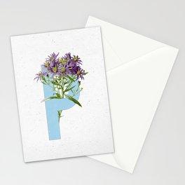 Letter 'P' Monogram Stationery Cards