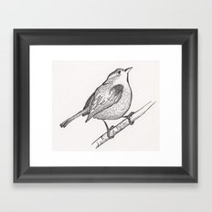 Wren on a Branch Framed Art Print