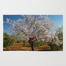 An Almond tree in flower Rug
