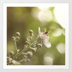 Busy Little Bee Bum Art Print