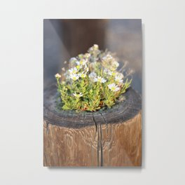 Friday Flowers Metal Print