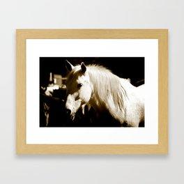 White Horse-Sepia Framed Art Print