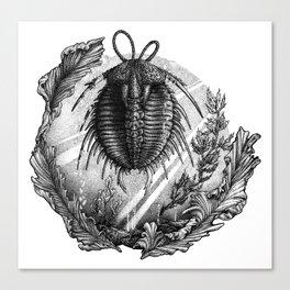 Trilobite Canvas Print