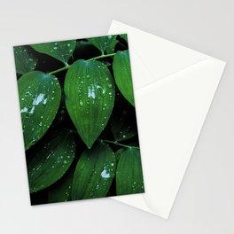 Solomon Seal Leaf Texture, Botanical Print, Nature Art Stationery Cards