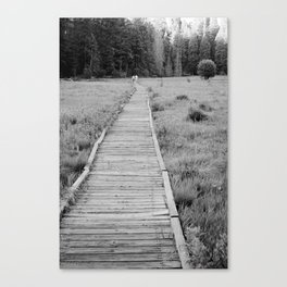 Walkway To The Woods Canvas Print