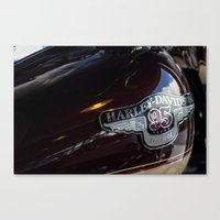 harley Canvas Prints featuring Harley by Paul Anthony Thompson