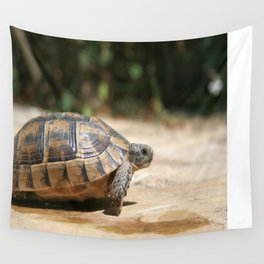 Sideview of A Walking Turkish Tortoise Wall Tapestry