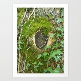 nature watching us Art Print