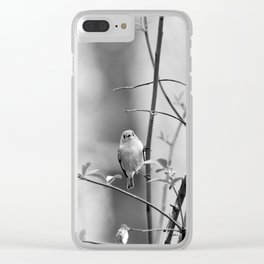 Ruby-Crowned Kinglet, Small Bird Clear iPhone Case