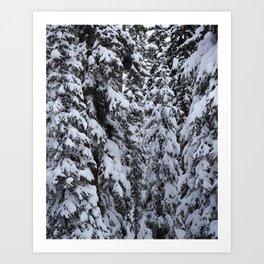 Snowy Abyss Art Print