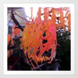 orange fingers Art Print