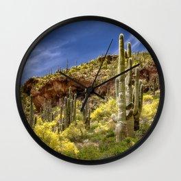 Tonto National Monument, AZ Wall Clock