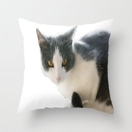 A Max And Mantle Bi Colour Cat Isolated Throw Pillow