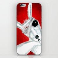 kangaroo iPhone & iPod Skins featuring Kangaroo by Soso Creation