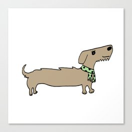 Daschund with scarf Canvas Print