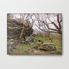 Room To Breathe Metal Print