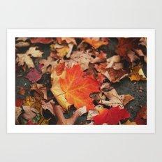 crimson leaves Art Print