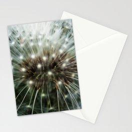 Mandolin 2.57 Stationery Cards