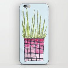 Little Potted Plant iPhone & iPod Skin