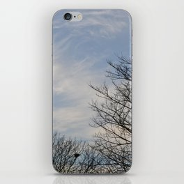 Blue Sky and Trees iPhone Skin