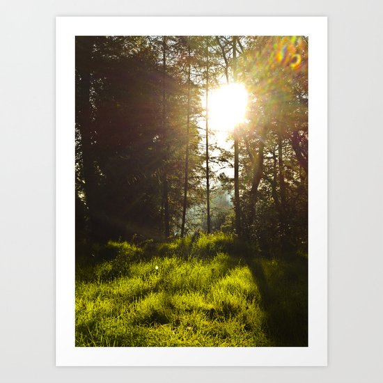Morning Atmosphere Art Print