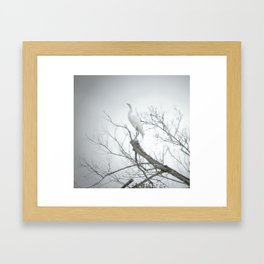 Egret, 2011.  Schriever, LA Framed Art Print
