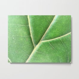 GrEenLeAf Metal Print