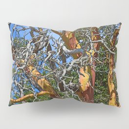 MADRONA TREE DEAD OR ALIVE Pillow Sham