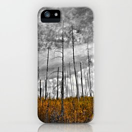 the wilderness iPhone Case