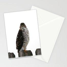 Look me in the Eye Stationery Cards