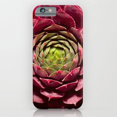 Hard Candy iPhone 6s Slim Case