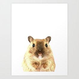 Hamster Portrait Art Print
