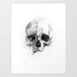 Skull 46 Art Print