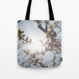 Blossoms in the Spring Tote Bag