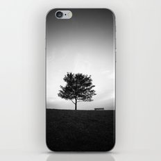 Tree and Bench iPhone & iPod Skin
