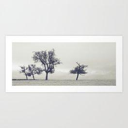 bleak trees... Art Print