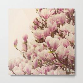 Oh Magnolia Metal Print
