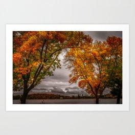 September in fall bloom -3 Art Print