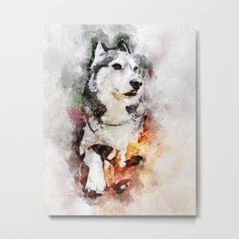 Tika'ani our Siberian Husky Metal Print