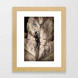 Dampened Framed Art Print