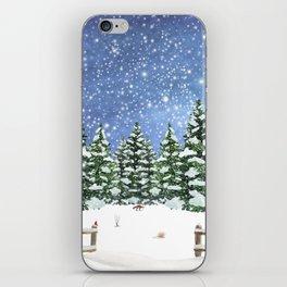 A Winter's Night iPhone Skin
