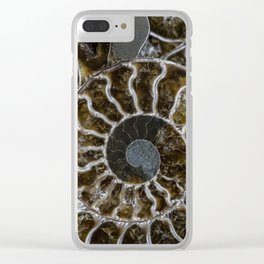 Patterns of ammonite Clear iPhone Case